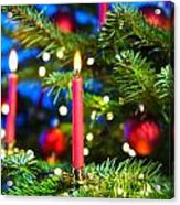 Red Candles In Christmas Tree Acrylic Print