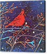 Red Cardinal Bird On Branch Painting Fine Art Print Acrylic Print