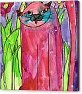 Red Cat Acrylic Print
