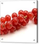 Red Currant Acrylic Print