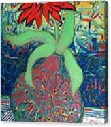 Red Diasy Acrylic Print