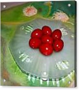 Red Eggs And Daisies Acrylic Print