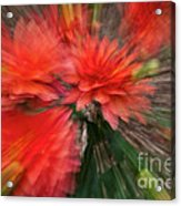 Red Explosion Acrylic Print