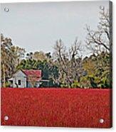 Red Field Acrylic Print