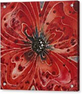 Red Flower 1 - Vibrant Red Floral Art Acrylic Print by Sharon Cummings