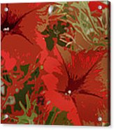 Red Flowers Acrylic Print