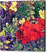 Red Geranium With Yellow And Purple Flowers - Vertical Acrylic Print