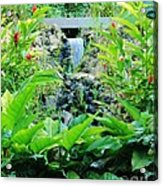 Red Ginger Falls Acrylic Print