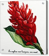 Red Ginger Poem Acrylic Print