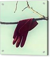 Red Glove Acrylic Print