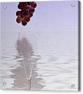 Red Grapes Wine Glass Fantasy Acrylic Print