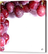 Red Grapes With White Copy Space Acrylic Print