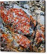 Red Growth Rock Acrylic Print