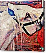 Red Hay Bag Acrylic Print