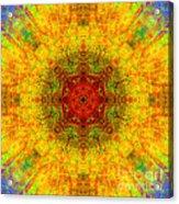 Red Heart Sun Rainbow Mandala Acrylic Print