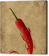 Red Hot Chili Pepper Poster  Acrylic Print