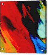 Red Hot Fiesta  Acrylic Print