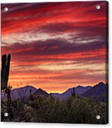 Red Hot Sonoran Sunset Acrylic Print