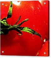 Red Hot Tomato Acrylic Print