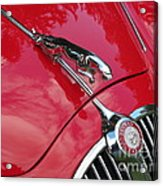 Red Jaguar 3.8 Acrylic Print