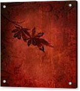 Red Japanese Maple On Red Acrylic Print