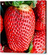 Red Juicy Delicious California Strawberry Acrylic Print