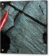 Red Leaf On Cut Wood Acrylic Print