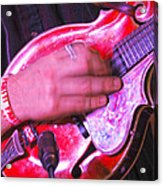 Red Mandolin Acrylic Print