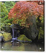 Red Maple Tree Over Waterfall Pond Acrylic Print