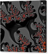Red Meets Black Acrylic Print