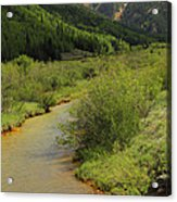 Red Mountain Creek - Colorado  Acrylic Print by Mike McGlothlen