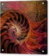 Red Nautilus Acrylic Print