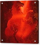 Red On Red Horse Acrylic Print
