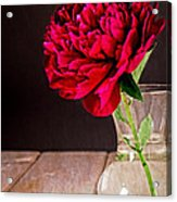 Red Peony Flower Vase Acrylic Print by Edward Fielding