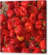 Red Peppers At The Saturday Market, San Acrylic Print