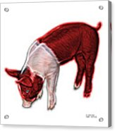 Red Piglet - 0878 Fs Acrylic Print