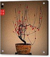 Red Plum Blossoms Acrylic Print by GuoJun Pan
