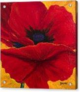 Red Poppi II Acrylic Print