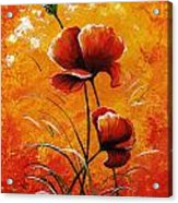Red Poppies 023 Acrylic Print
