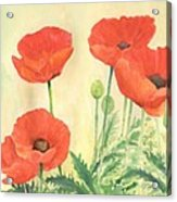 Red Poppies 3 Colorful Watercolor Poppy Floral Original Art Flowers Garden Artist K. Joann Russell Acrylic Print