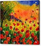 Red Poppies 45 Acrylic Print by Pol Ledent