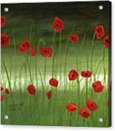 Red Poppies In The Woods Acrylic Print