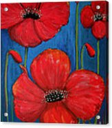 Red Poppies On Blue Acrylic Print
