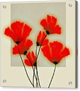 Red Poppies On Gray - Abstract Flower Art Acrylic Print