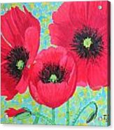 Red Poppis Acrylic Print