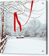 Red Ribbon In Tree Acrylic Print by Amanda Elwell