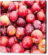 Red Ripe Plums Acrylic Print