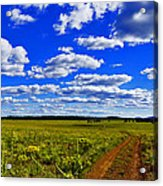 Red Road Acrylic Print
