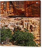 Red Rock Canyon 3 Acrylic Print