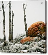 Red Rock Frost - Green Mountain - Wyoming Acrylic Print